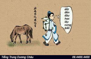 Thành ngữ, ngạn ngữ Trung Quốc